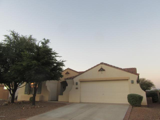 7346 W Chesapeake Drive, Marana, AZ 85743 (#21919287) :: Gateway Partners | Realty Executives Tucson Elite