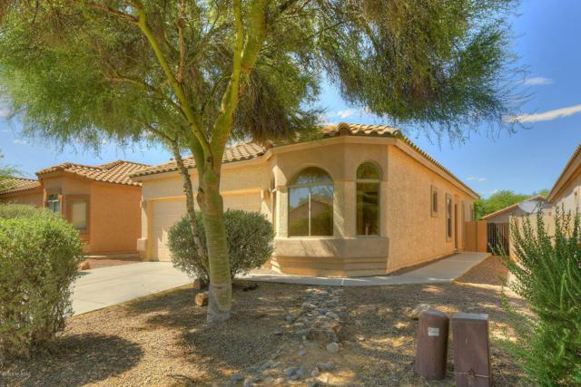 317 E Camino Limon Verde, Sahuarita, AZ 85629 (#21919313) :: Gateway Partners   Realty Executives Tucson Elite