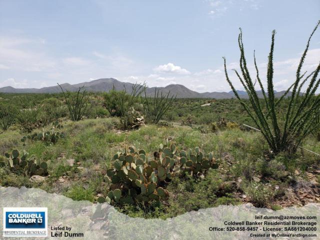 1093 S Garfield Avenue, Vail, AZ 85641 (#21919322) :: Gateway Partners | Realty Executives Tucson Elite