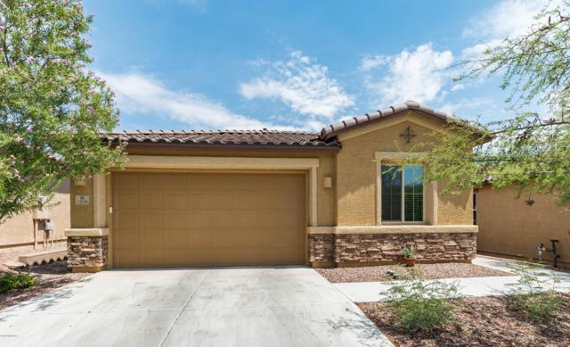 12106 N Meditation Drive, Marana, AZ 85658 (#21919326) :: Gateway Partners | Realty Executives Tucson Elite