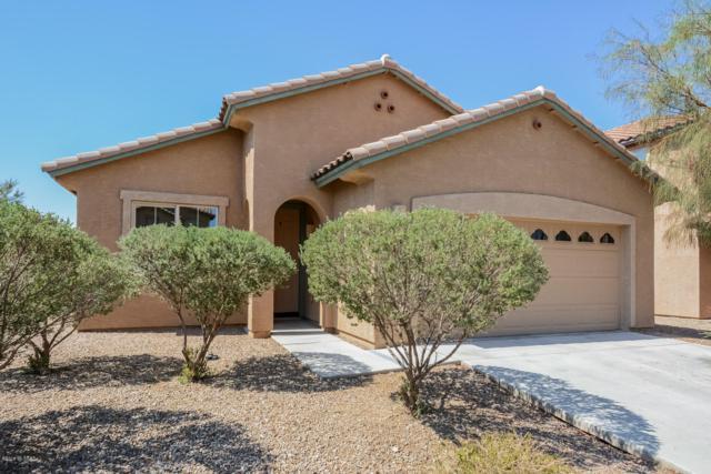 11567 W Bannerstone Street, Marana, AZ 85658 (#21919328) :: Gateway Partners | Realty Executives Tucson Elite
