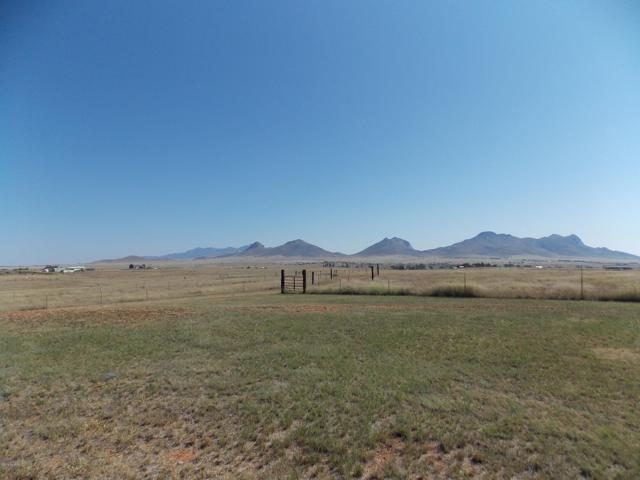 TBD Camino Agave Lane E, Elgin, AZ 85611 (#21919342) :: The Local Real Estate Group | Realty Executives