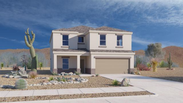 9107 W Blue Roan Lane, Marana, AZ 85653 (#21919354) :: Gateway Partners | Realty Executives Tucson Elite