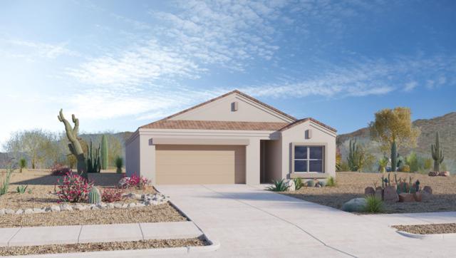 9131 W Blue Roan Lane, Marana, AZ 85653 (#21919360) :: Gateway Partners | Realty Executives Tucson Elite