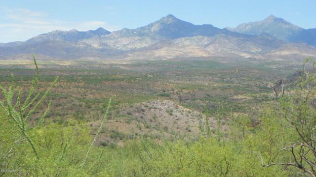 163 Canyon Pass Court #91, Tubac, AZ 85646 (#21919380) :: The Local Real Estate Group | Realty Executives