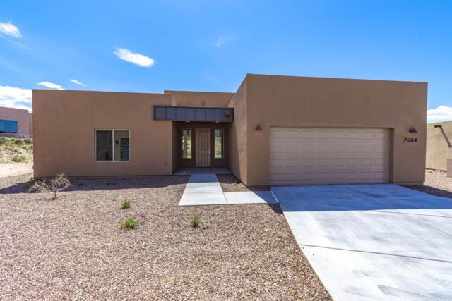 7684 S Galileo Lane, Tucson, AZ 85747 (#21919779) :: Long Realty - The Vallee Gold Team