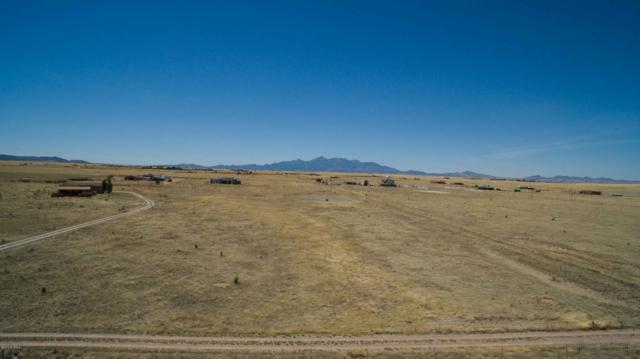 12 Spirit Sky Lane, Elgin, AZ 85611 (#21919905) :: Long Realty Company
