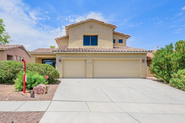 13767 N Bushwacker Place, Oro Valley, AZ 85755 (#21920019) :: Long Realty - The Vallee Gold Team