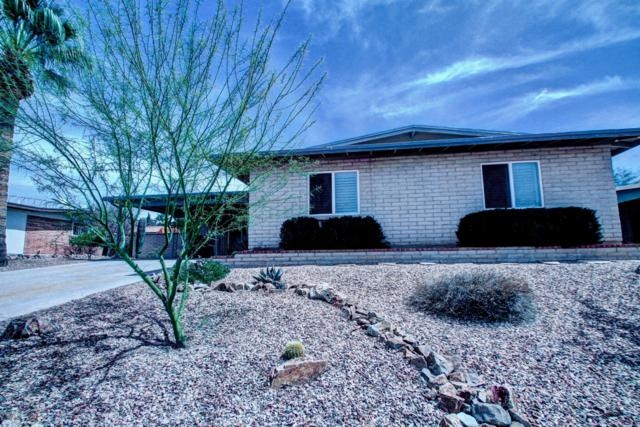 1741 S Palm Springs Circle, Tucson, AZ 85710 (#21920057) :: Long Realty Company