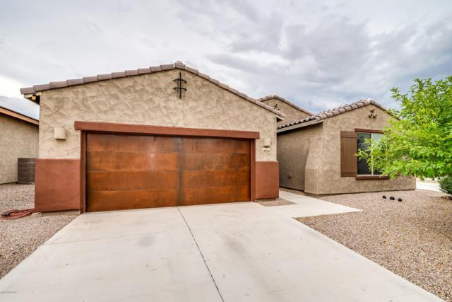 11028 N Delphinus Street, Oro Valley, AZ 85742 (#21920327) :: Long Realty - The Vallee Gold Team