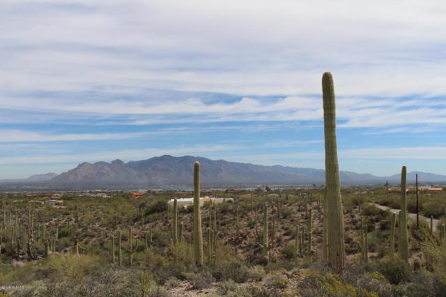 4620 W Crestview Circle #29, Tucson, AZ 85745 (MLS #21920336) :: The Property Partners at eXp Realty