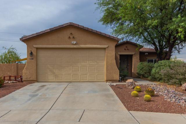 15191 N Canter Place, Tucson, AZ 85739 (#21920473) :: The Josh Berkley Team