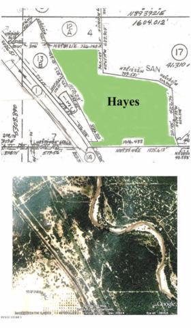 1213 N River Road, Benson, AZ 85602 (MLS #21920606) :: The Property Partners at eXp Realty