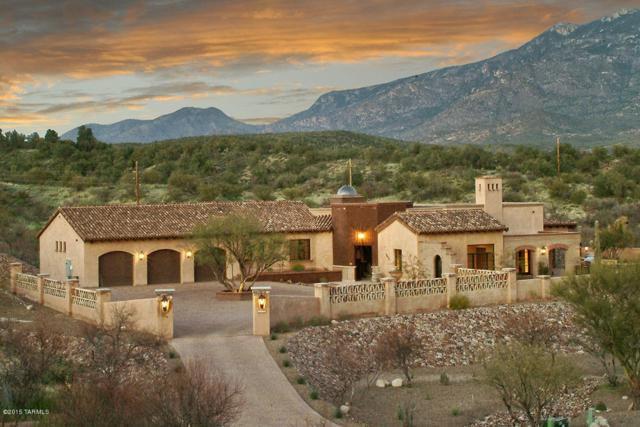 2617 E Talante Canyon Place, Tucson, AZ 85737 (#21920623) :: The Josh Berkley Team