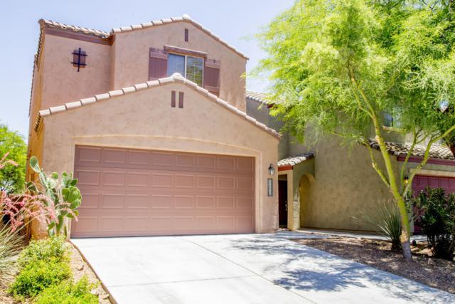 14305 S Camino El Galan, Sahuarita, AZ 85629 (MLS #21920674) :: The Property Partners at eXp Realty