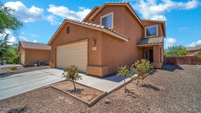 12849 N Steamboat Drive, Marana, AZ 85653 (#21920705) :: Long Realty Company