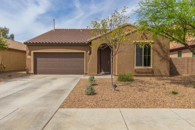 12613 N Greenberry Drive, Marana, AZ 85653 (#21920844) :: Long Realty Company