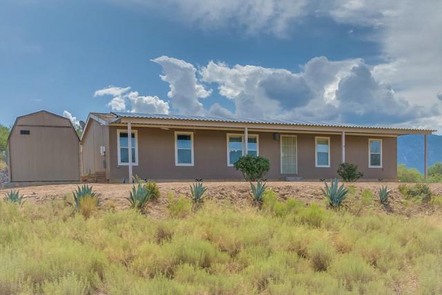 16560 N Elkins Road, Tucson, AZ 85739 (#21920869) :: The Josh Berkley Team