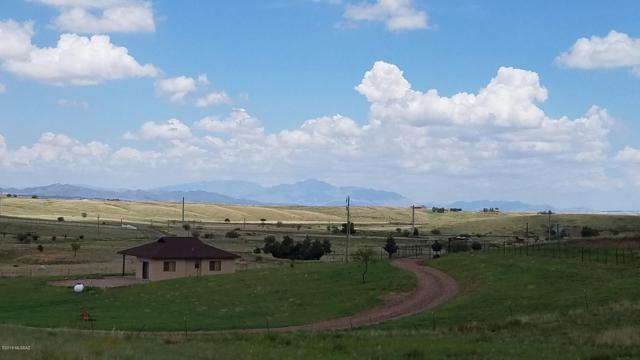 44 Mustang Trail Trail #9, Sonoita, AZ 85637 (#21920879) :: Long Realty Company