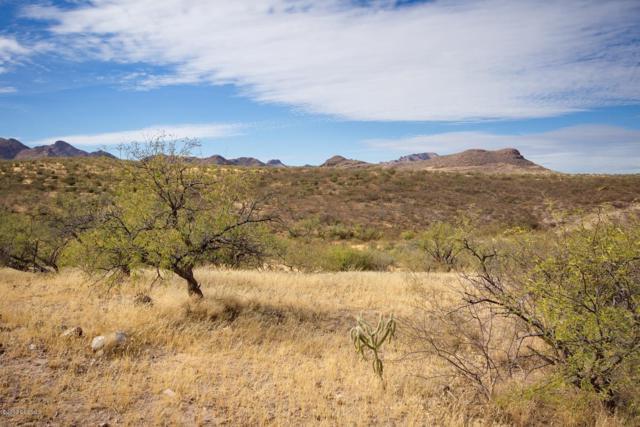 1 Vista De Torres, Tubac, AZ 85646 (#21920914) :: Long Realty Company