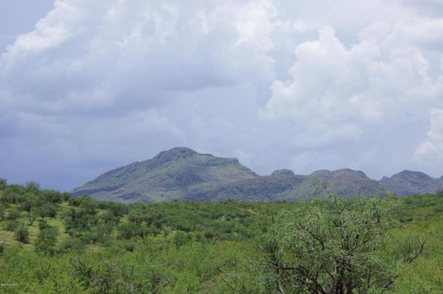 4 Vista De Torres, Tubac, AZ 85646 (#21920916) :: Long Realty Company