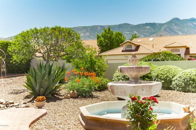 65630 E Desert Side Drive, Tucson, AZ 85739 (#21920929) :: Long Realty Company