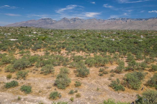 10495 E Tanque Verde Road, Tucson, AZ 85749 (#21921052) :: The Josh Berkley Team
