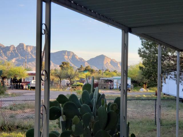 16681 N Myste Lane, Tucson, AZ 85739 (#21921087) :: The Josh Berkley Team