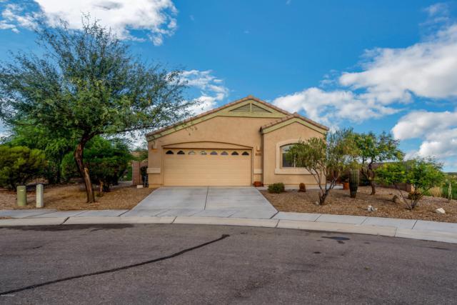 14397 N Bannerstone Court, Marana, AZ 85658 (#21921123) :: Long Realty Company