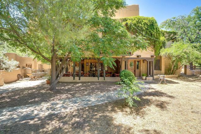 8740 E Summer Trail, Tucson, AZ 85749 (#21921177) :: The Josh Berkley Team