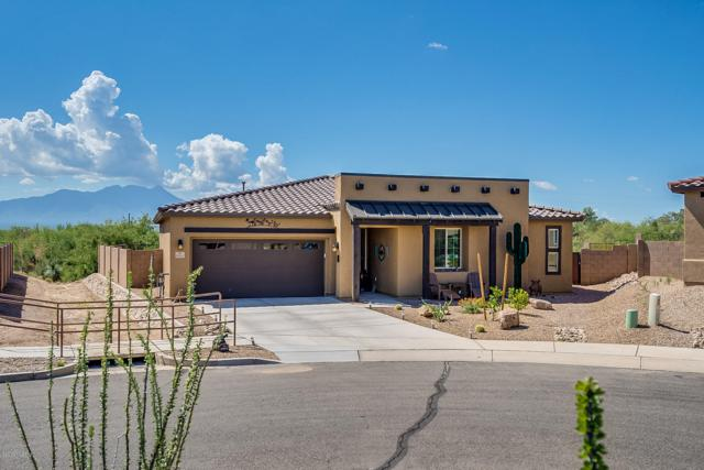 18184 S Peaceful Meadow Court, Sahuarita, AZ 85629 (MLS #21921206) :: The Property Partners at eXp Realty