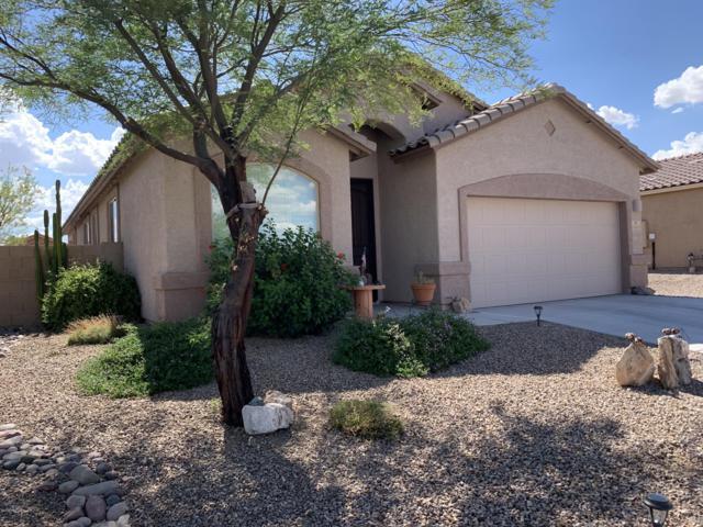 14245 N Bronze Statue Avenue, Marana, AZ 85658 (#21921272) :: Long Realty Company