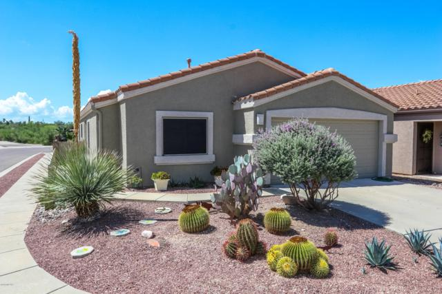 9836 E Spanish Flower Court, Tucson, AZ 85748 (#21921276) :: The Josh Berkley Team