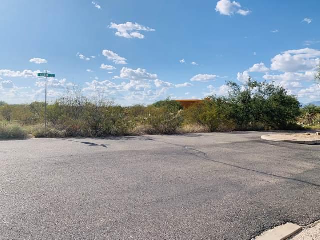 9090 S Halana Lane #36, Vail, AZ 85641 (MLS #21923759) :: The Property Partners at eXp Realty