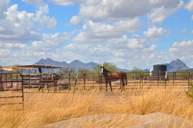 17365 W El Camino De Tres Arroyos, Marana, AZ 85653 (#21923809) :: The Local Real Estate Group | Realty Executives
