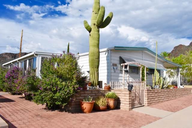5342 W Diamond K Street, Tucson, AZ 85713 (#21923941) :: Long Realty Company