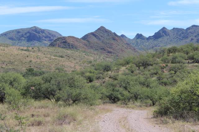 TBD Silver Mine Trail #55, Tubac, AZ 85646 (#21923946) :: The Local Real Estate Group | Realty Executives