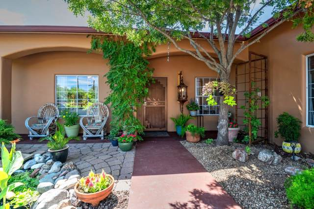 412 N Estill Drive, Oracle, AZ 85623 (#21924039) :: Long Realty - The Vallee Gold Team