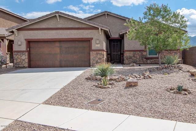 11076 N Hydrus Avenue, Oro Valley, AZ 85742 (MLS #21924051) :: The Property Partners at eXp Realty