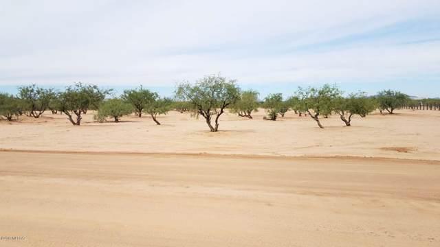 8574 S Marstellar Road, Tucson, AZ 85736 (#21924057) :: Long Realty - The Vallee Gold Team