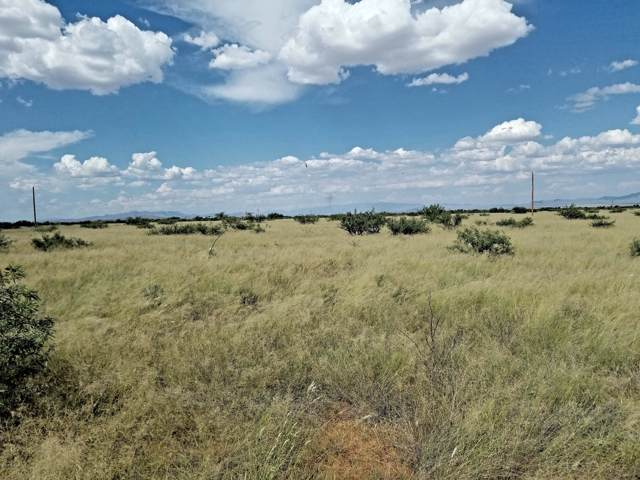 1 AC Cloud #11, Pearce, AZ 85625 (#21924173) :: Gateway Partners | Realty Executives Tucson Elite