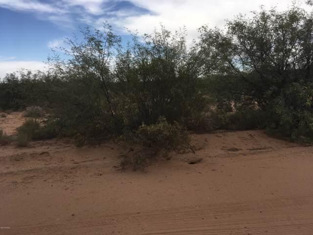 12626 W Blue Aloe Street, Tucson, AZ 85735 (#21924193) :: Long Realty Company