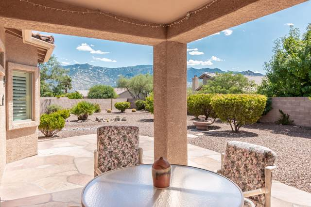 3662 E Fjord Pony Road, Tucson, AZ 85739 (#21924277) :: Long Realty Company