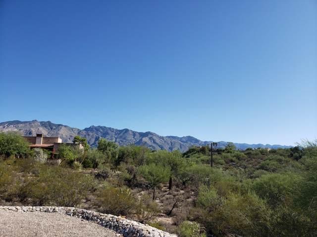 4230 N Camino Colibri #517, Tucson, AZ 85718 (#21924313) :: Long Realty Company