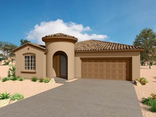 10123 N Indian Jewel Drive, Marana, AZ 85742 (MLS #21924420) :: The Property Partners at eXp Realty