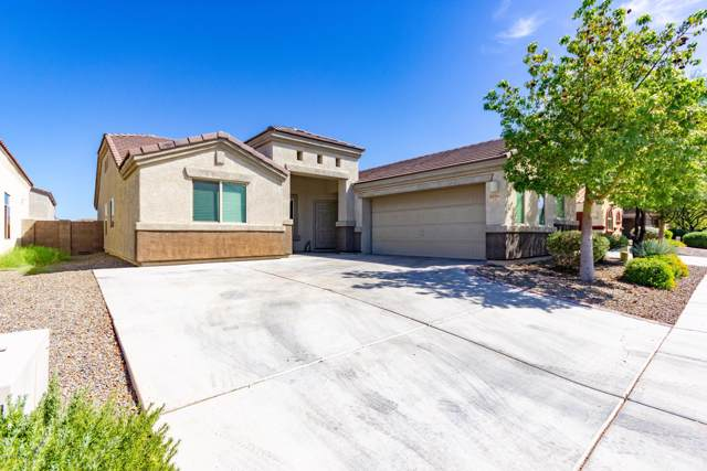 8296 W Melanitta Drive, Tucson, AZ 85757 (#21924481) :: Long Realty Company