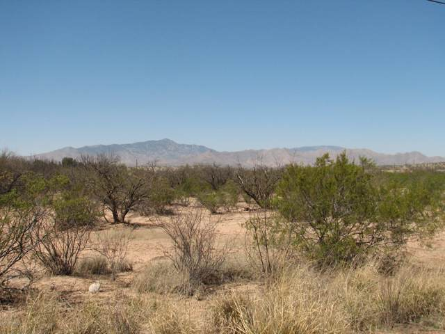 1.50 Acres N Alvie Lee Lane, Benson, AZ 85602 (MLS #21924509) :: The Property Partners at eXp Realty
