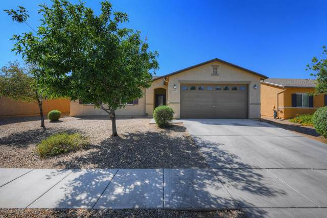 8367 W Kittiwake Lane, Tucson, AZ 85757 (#21924525) :: Long Realty - The Vallee Gold Team