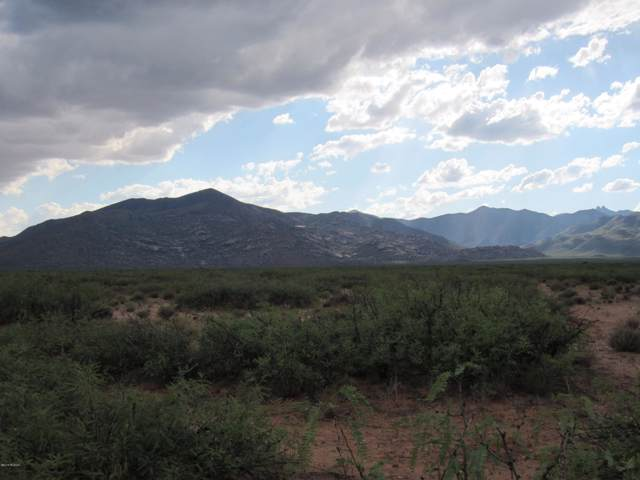 50 Acres E Soaptree East Road, Bowie, AZ 85605 (#21924760) :: Long Realty Company