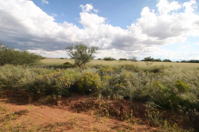 Lot 81 E Tom Jeffords Drive #81, St. David, AZ 85630 (#21924895) :: Long Realty - The Vallee Gold Team